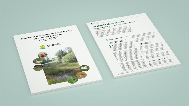 Publications mockup